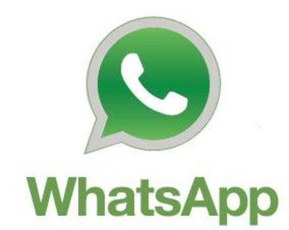 whtasapp contact