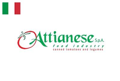attianese san marzano tomatoes