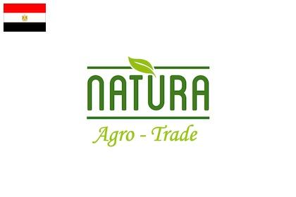 natura agro trade artichokes