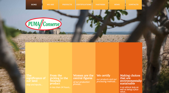 puma conserve web
